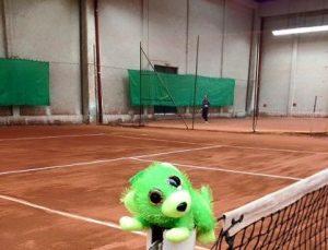 tennis loire