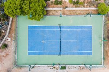 tennis paca
